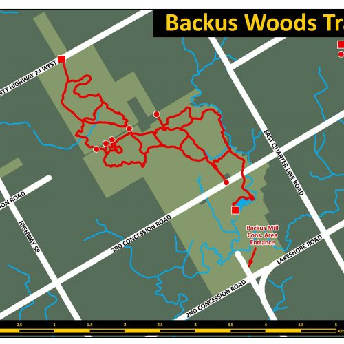 Backus Woods Trail Map