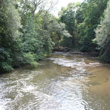 View of river at Brook Conservation Trail