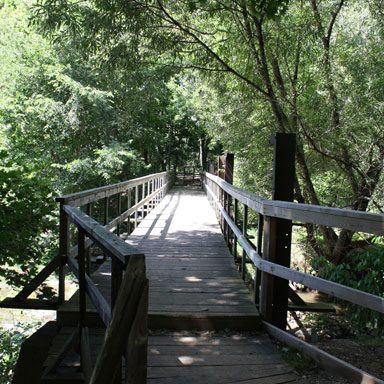 Walkway at Brook Conservation Trail