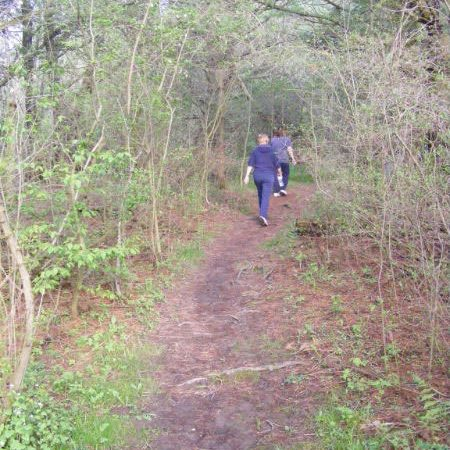 The trails vary in width from 2.5 to 6 ft.