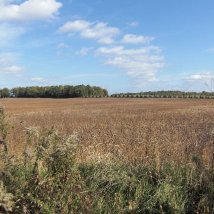 Panoramic view on the trail