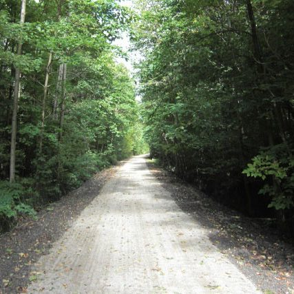 Forest trail north of Waterford