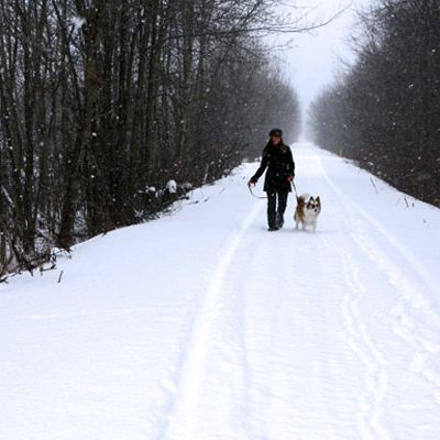 Delhi Rail Trail in Winter
